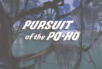 Pursuit of the PoHo Title Card